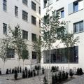 hualt07-2006-09-avp-15-30cm-h800px