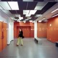 huneu29-2007-02-avp-65-flur-30cm-b800px